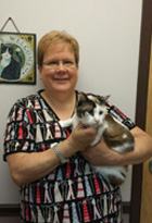 Dr. Alison Kinnunen is a Veterinarian at the Troy IL Veterinary Clinic