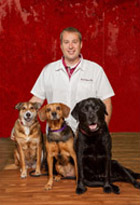 David Mears, DVM, is a Veterinarian at the Troy IL Veterinary Clinic