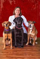 Julie Mears, DVM, is a Veterinarian at the Troy IL Veterinary Clinic